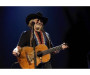 Willie Nelson in Concert Tickets The Capitol Theatre