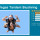 Skydive in Las Vegas! Exclusive Discount!